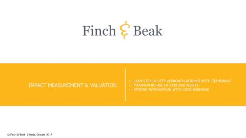 Finch & Beak's Impact Measurement and Valuation Services