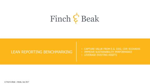 Finch & Beak's Benchmark Consulting Services