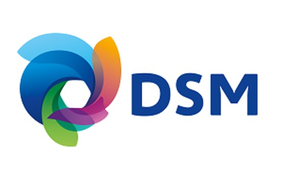 DSM: Sustainability as a Driver for Innovation