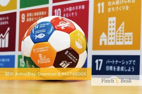 A Little Less Conversation, a Little More SDG Action