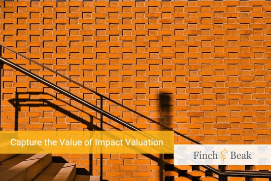 White Paper: Capture the Value of Impact Valuation