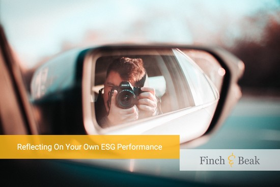 How to Assess Your Own ESG Performance