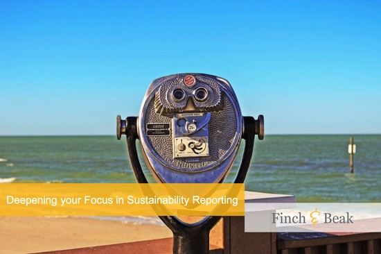 Deepening your Focus for Better Sustainability Reporting