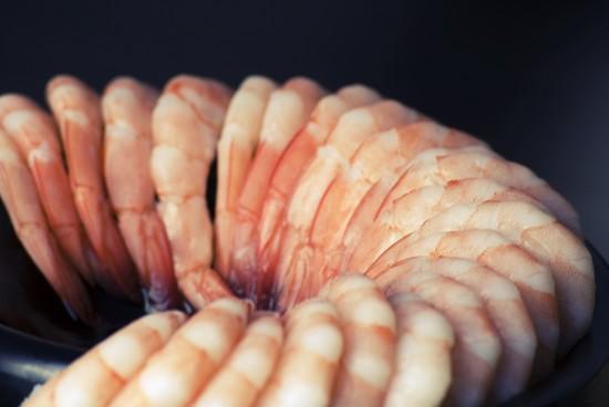 The Circular Business Model of Happy Shrimp