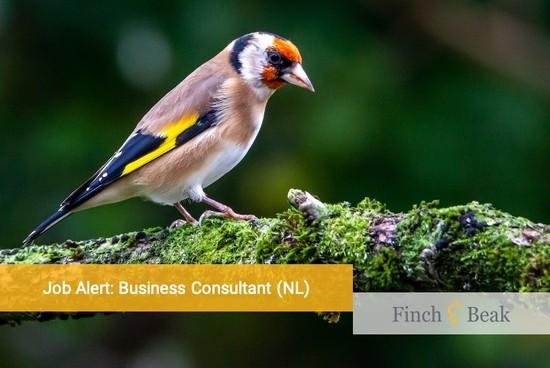 Job Alert: Business Consultant Sustainability