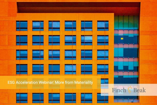 ESG Acceleration Webinar: More from Materiality