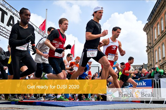 How to Prepare for the DJSI 2020