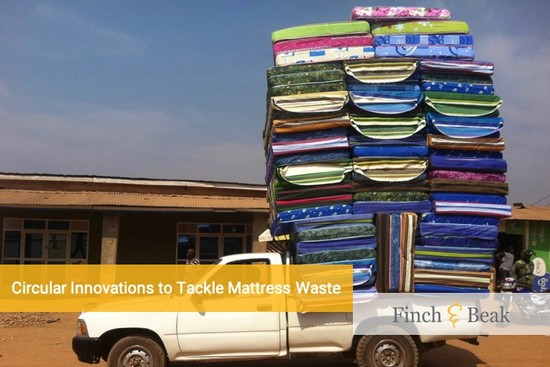 Circular Economy in Motion: the Mattress Market