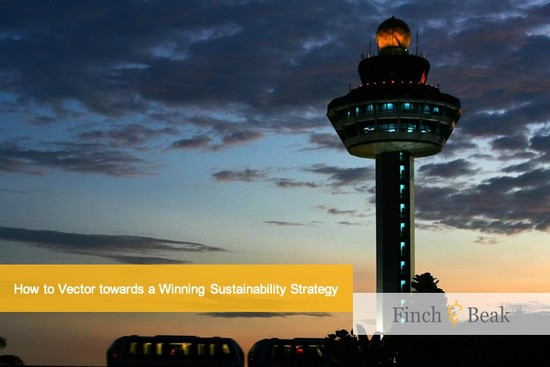 Vectoring Winning Sustainability Strategies