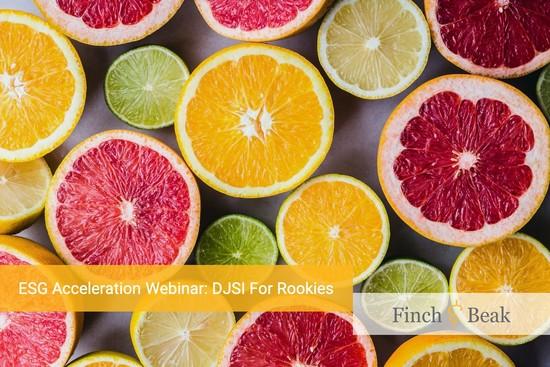 ESG Acceleration Webinar: DJSI For Rookies