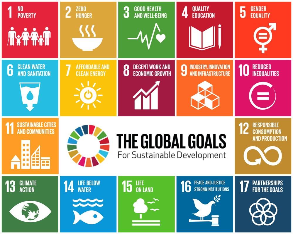Bilderesultat for SDGs