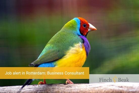 Job Alert: Business Consultant