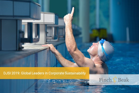 The 2019 Global Dow Jones Sustainability Index Results