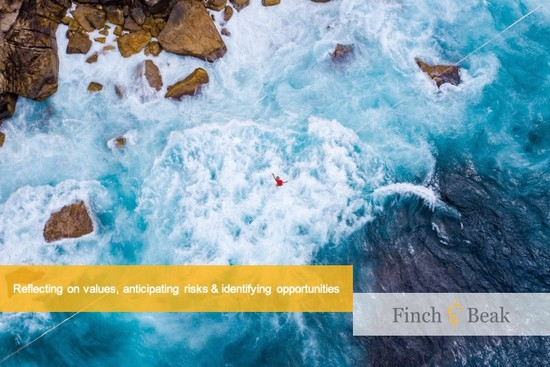 Rethinking Value, Emerging Risks and Revealing ESG Leaders