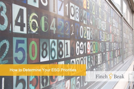ESG Results: Turning Data into Action