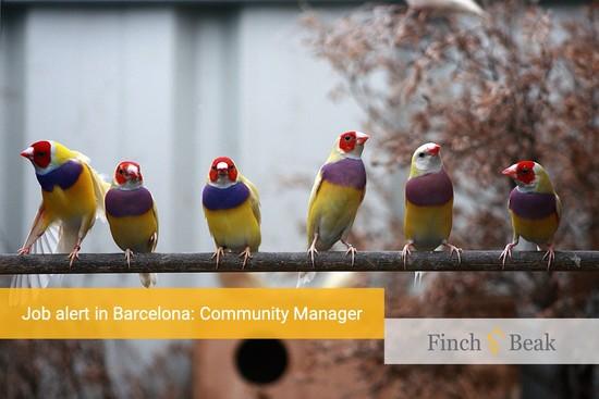Job Alert: Community Manager