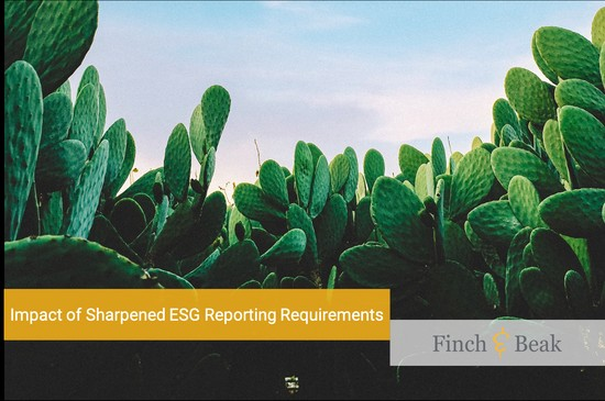 Impact of sharpened ESG reporting requirements.png