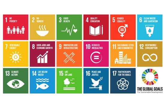 SDGs as Instrument for Business Integration