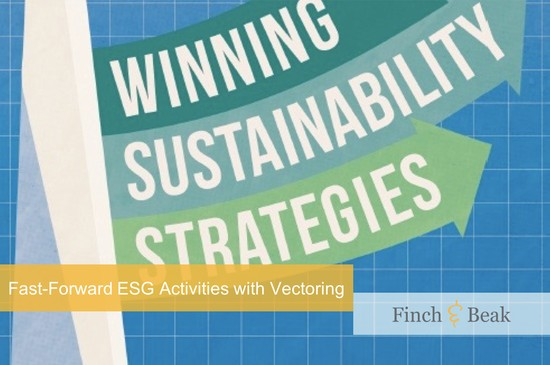 Winning Sustainability Strategies Book