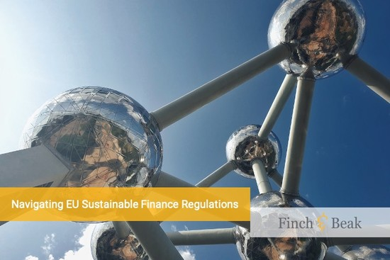 What You Need to Know about the EU's Sustainable Finance Regulations
