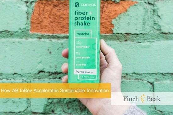 Corporate Accelerators for Sustainable Innovation