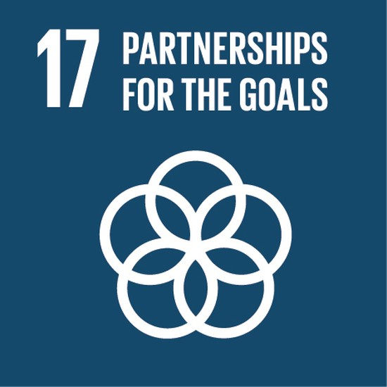 Together Forever: Building Partnerships for the Goals