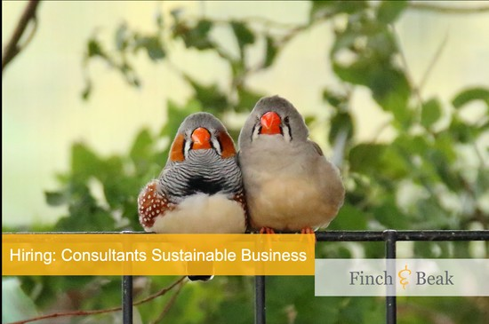 Consultants Sustainable Business