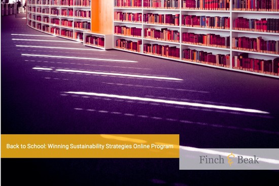 Start of the IMD Winning Sustainability Strategies Online Program