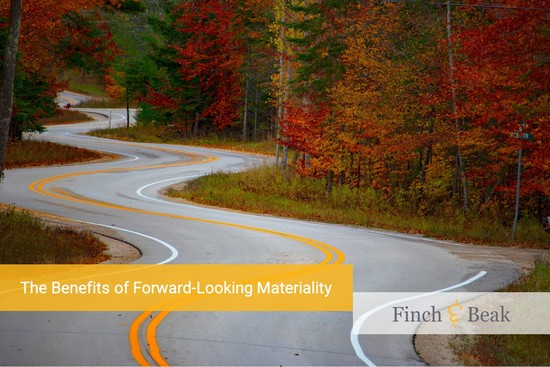 The Benefits of Forward-Looking Materiality