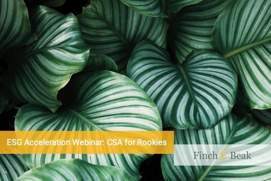 ESG Acceleration Webinar: CSA For Rookies