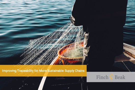 Traceability: The Path towards More Sustainable Supply Chains