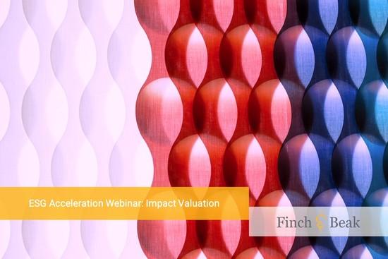 ESG Acceleration Webinar: Impact Valuation