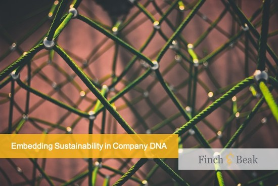 Embedding Sustainability in Company DNA