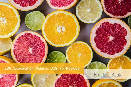 ESG Acceleration Webinar: DJSI For Rookies