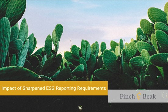 Impact of Sharpened ESG Reporting Requirements
