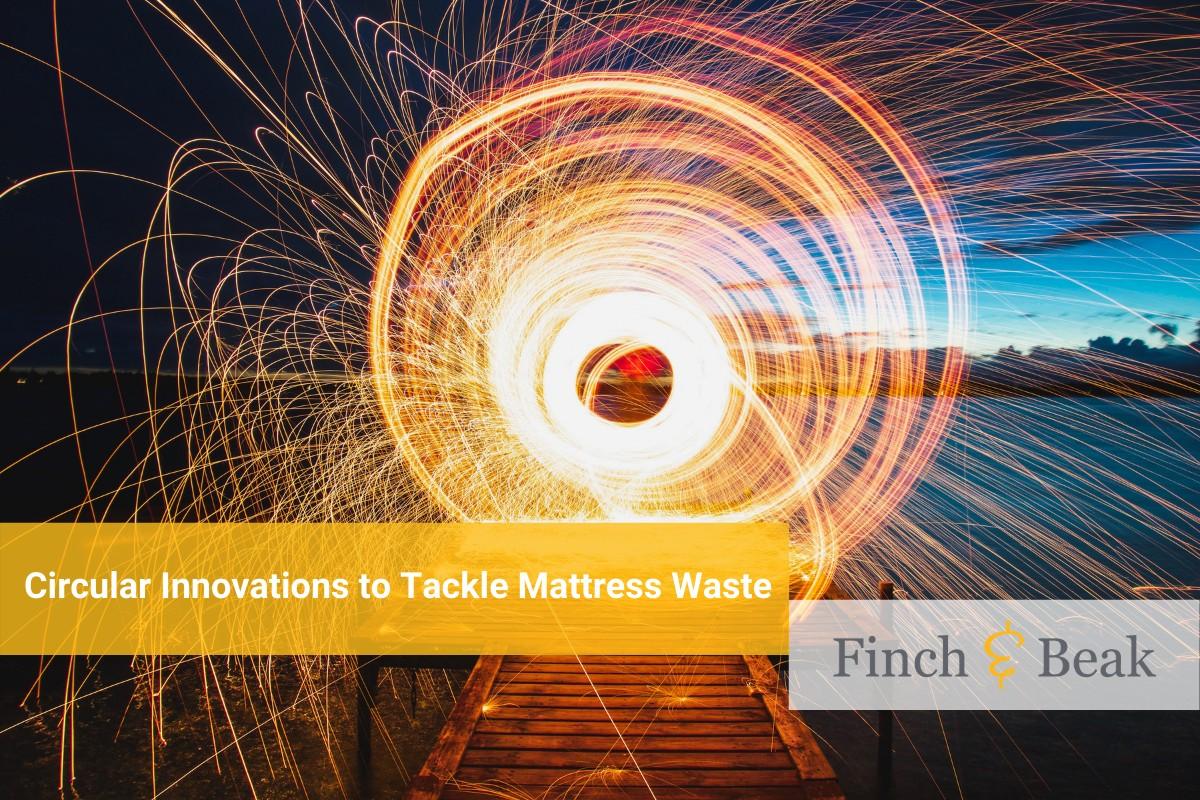 Circular Economy In Motion The Mattress Market Finch Beak Consulting