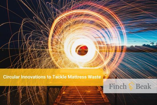 Circular Economy in Motion: the Mattress Market